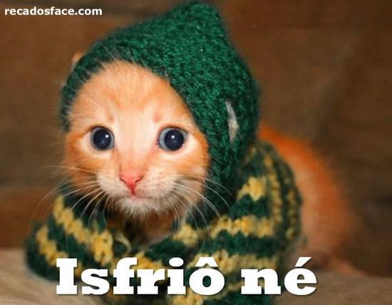 Que frio - Imagens para facebook