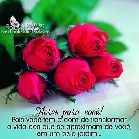 Flores Frases E Mensagens De Flores Para Facebook