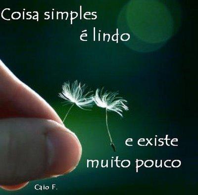 Frase de Caio F. Abreu