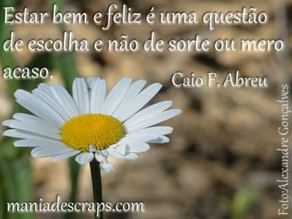 Frase de Caio F Abreu