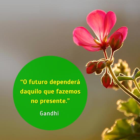 Frase de Gandhi o futuro