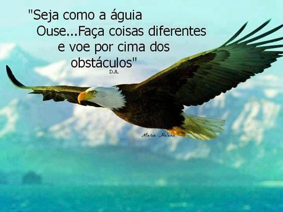 Frases Seja como a águia