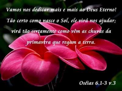Salmos e Versículos - Imagens para facebook